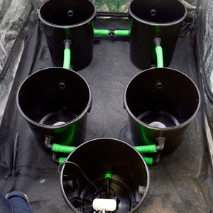 5 buckets with green hose connected 2