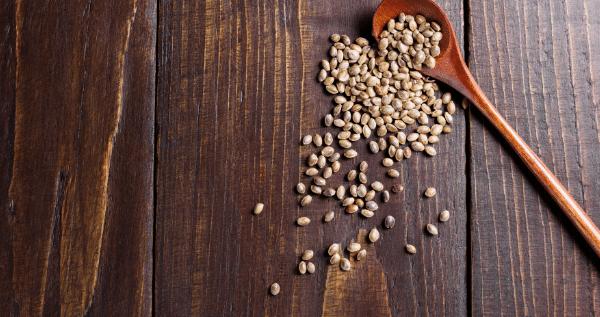 seeds to grow marijuana
