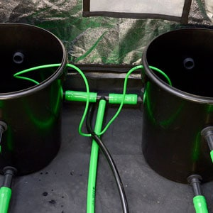 two buckets connect with green hose