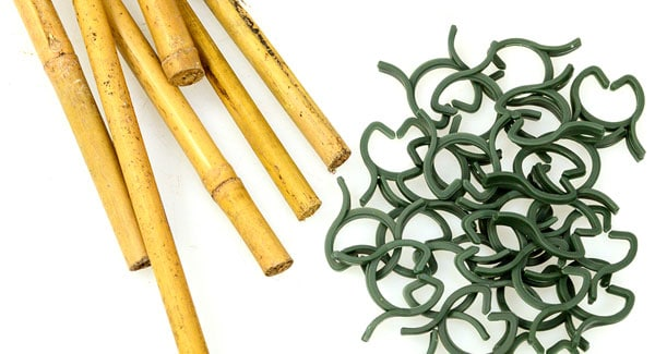 Bamboo and plant clips