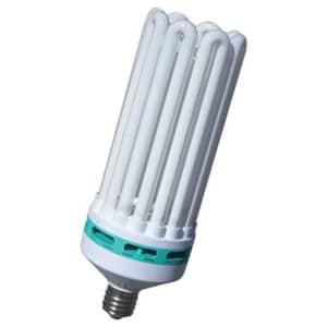 Different grow lights CFL