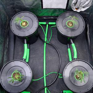 4 bubble buckets 1