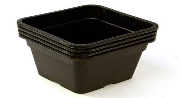 Scrog Large Pots