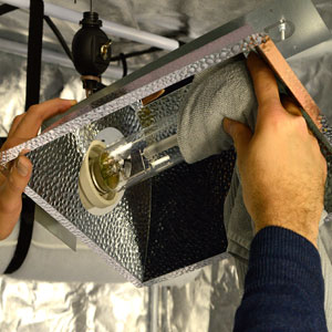 Install light and screw in light bulb