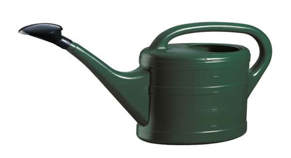 Watering can or pump for marijuana plant