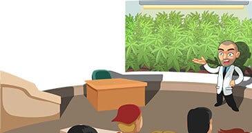 marijuana master classes