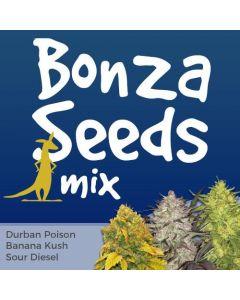 Bonza Seeds Mix Pack Seed Variety Pack