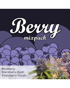 Berry Mix Pack Seed Variety Pack