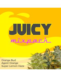 Juicy Mix Pack Seed Variety Pack