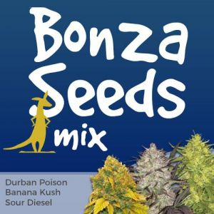Bonza Seeds Mix Pack Seed Variety Pack