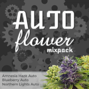 Autoflower Mix Pack Seed Variety Pack