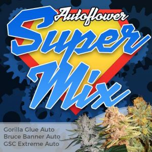 Autoflower Super Mix Pack Seed Variety Pack