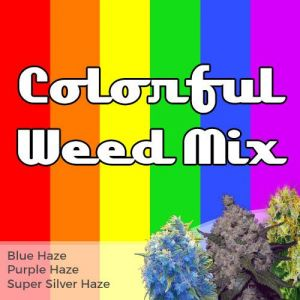 Colorful Weed Mix Pack Seed Variety Pack