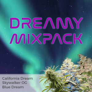Dreamy Mix Pack Seed Variety Pack