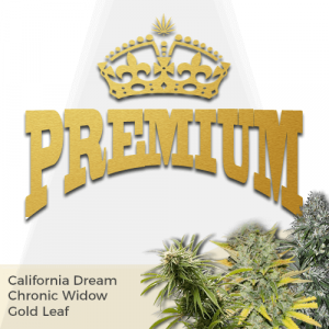 Premium Mix Pack Seed Variety Pack