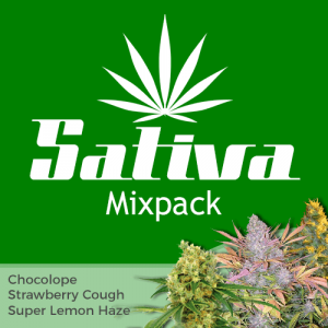Sativa Mix Pack Seed Variety Pack