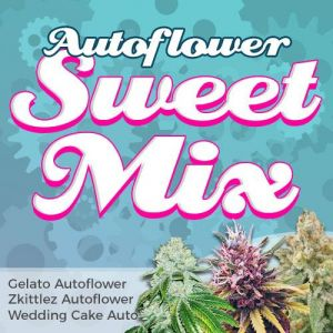 Autoflower Sweet Mix Pack Seed Variety Pack