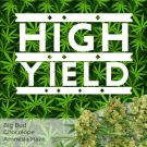 High Yield Mix Pack Seed Variety Pack